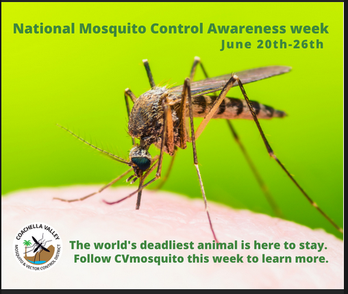 Fight the Bite! It's National Mosquito Control Awareness Week!