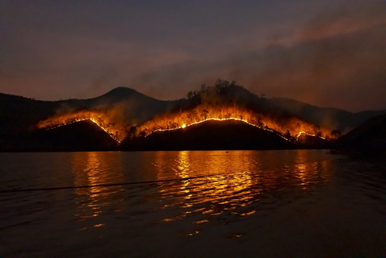 Wildfires, Runoff and Watersheds, Oh My!